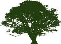WEATHERBY'S Tree Service Little Rock Logo of a small tree all in green.